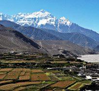 Dhampus Peak